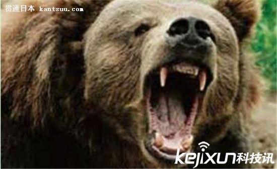 日本上演黑熊疯狂撕裂人类瞬间 动物吃人?